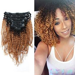 Sassina Seamless Double Wefts Kinky Curly Clip In Human Hair